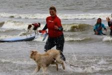 honden SUP & surfles
