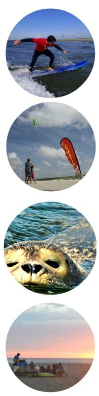 Surfles groepen