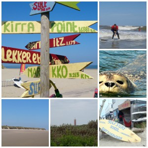 strand flaauwe werk surfspot ouddorp surfschool Surfkaravaan
