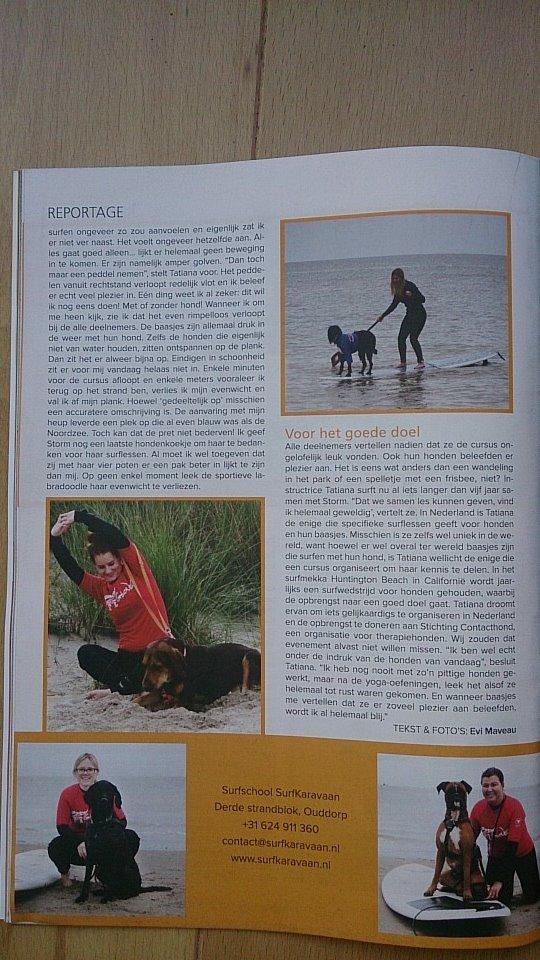 hondensurfles in Ouddorp bij surfschool SurfKaravaan